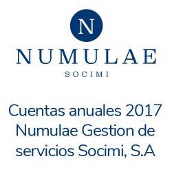 Cuentas-anuales-2017-Numulae-Gestión-de-servicios-Socimi,-S.A